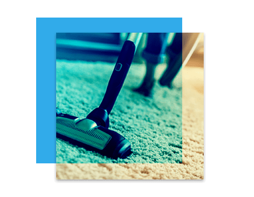 Professional Carpet Cleaning Kaleen